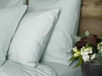 pillowcases duck egg